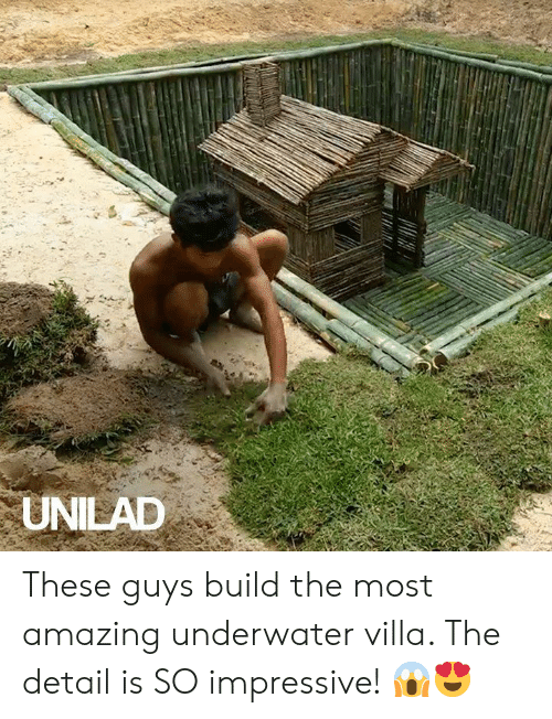 unilad: UNILAD These guys build the most amazing underwater villa. The detail is SO impressive! 😱😍
