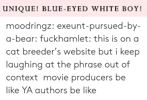 Authors: UNIQUE! BLUE-EYED WHITE BOY moodringz:  exeunt-pursued-by-a-bear:  fuckhamlet:  this is on a cat breeder's website but i keep laughing at the phrase out of context  movie producers be like   YA authors be like