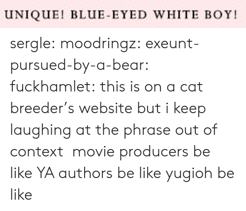 Authors: UNIQUE! BLUE-EYED WHITE BOY sergle: moodringz:  exeunt-pursued-by-a-bear:  fuckhamlet:  this is on a cat breeder's website but i keep laughing at the phrase out of context  movie producers be like   YA authors be like   yugioh be like