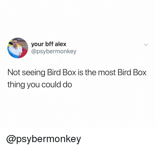 Stephe: UNIVE  your bff alex  @psybermonkey  STEPHE  RUB  Not seeing Bird Box is the most Bird Box  thing you could do @psybermonkey