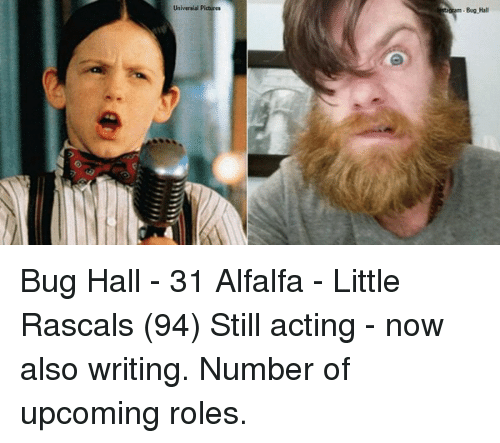 rascals: Universal Pictures  Bag-Hall Bug Hall - 31 Alfalfa - Little Rascals (94) Still acting - now also writing. Number of upcoming roles.