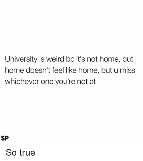 True, Weird, and Home: University is weird bc it's not home, but  home doesn't feel like home, but u miss  whichever one you're not at  SP So true