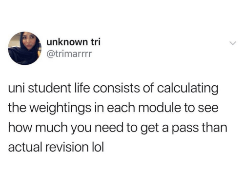 Tri: unknown tri  @trimarrrr  uni student life consists of calculating  the weightings in each module to  how much you need to get a pass than  actual revision lol