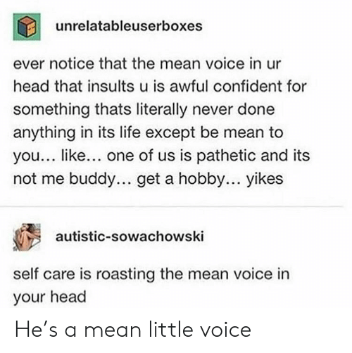 Not Me: unrelatableuserboxes  ever notice that the mean voice in ur  head that insults u is awful confident for  something thats literally never done  anything in its life except be mean to  you... like... one of us is pathetic and its  not me buddy.. get a hobby... yikes  autistic-sowachowski  self care is roasting the mean voice in  your head He's a mean little voice