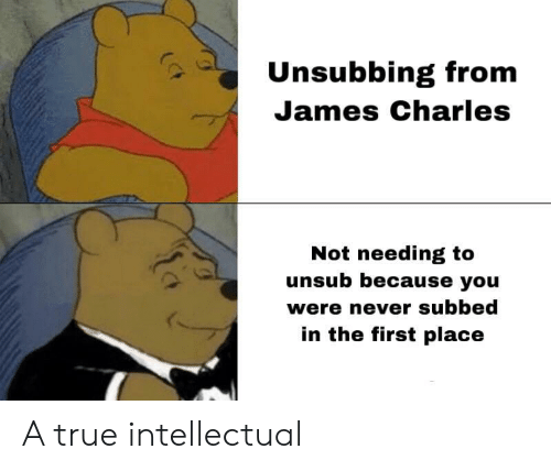Subbed: Unsubbing from  James Charles  Not needing to  unsub because you  were never subbed  in the first place A true intellectual