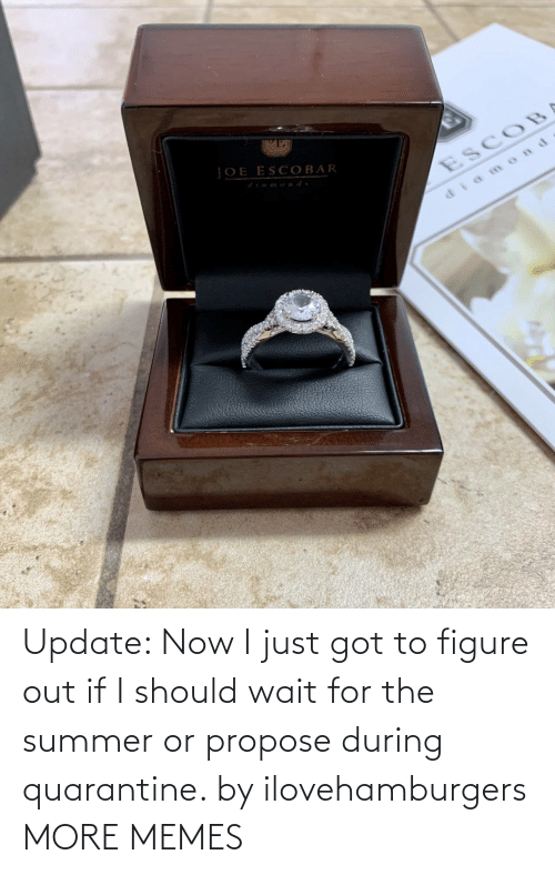 propose: Update: Now I just got to figure out if I should wait for the summer or propose during quarantine. by ilovehamburgers MORE MEMES