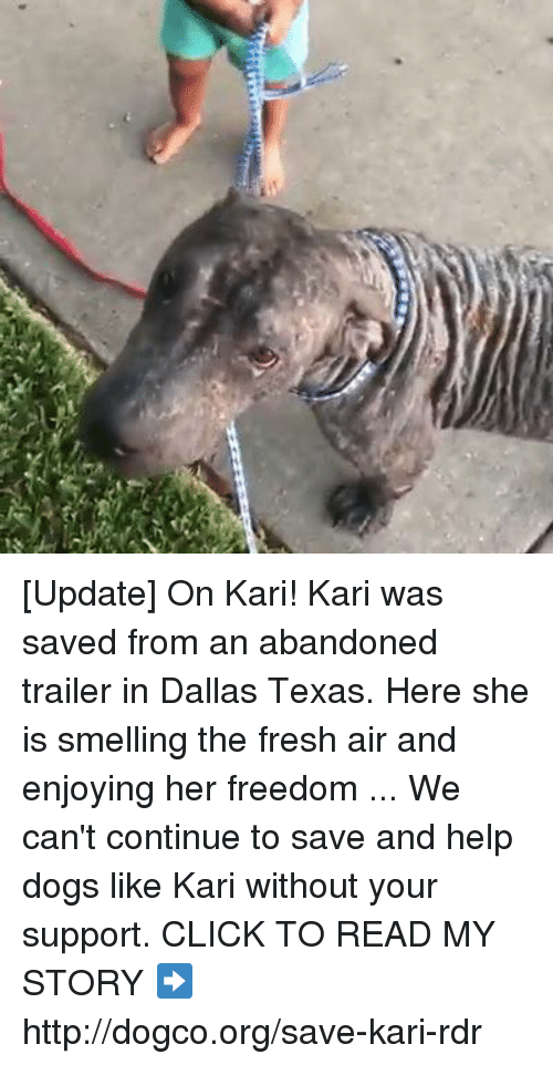 Texas: [Update] On Kari!   Kari was saved from an abandoned trailer in Dallas Texas. Here she is smelling the fresh air and enjoying her freedom ...  We can't continue to save and help dogs like Kari without your support. CLICK TO READ MY STORY ➡ http://dogco.org/save-kari-rdr