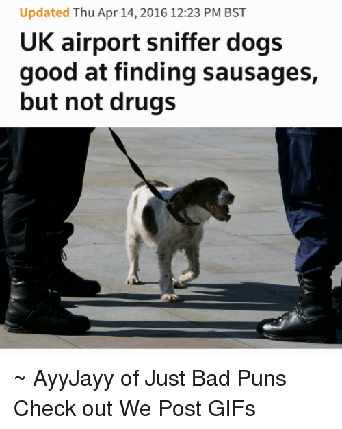 Bad Puns: Updated Thu Apr 14, 2016 12:23 PM BST  UK airport sniffer dogs  good at finding sausages,  but not drugs ~ AyyJayy of Just Bad Puns  Check out We Post GIFs