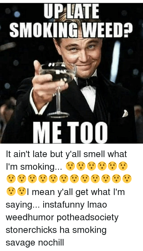 Memes, 🤖, and Me Too: UPLATE  SMOKING NEED  ME TOO It ain't late but y'all smell what I'm smoking... 😯😯😯😯😯😯😯😯😯😯😯😯😯😯😯😯😯😯😯😯I mean y'all get what I'm saying... instafunny lmao weedhumor potheadsociety stonerchicks ha smoking savage nochill