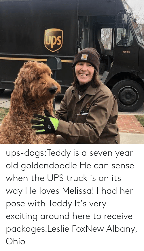 goldendoodle: ups-dogs:Teddy is a seven year old goldendoodle He can sense when the UPS truck is on its way He loves Melissa! I had her pose with Teddy It's very exciting around here to receive packages!Leslie FoxNew Albany, Ohio