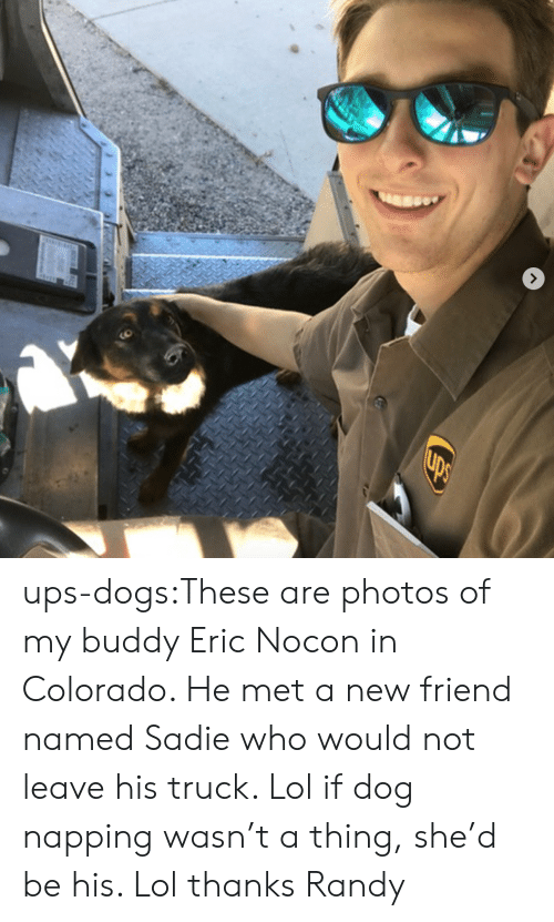 randy: ups-dogs:These are photos of my buddy Eric Nocon in Colorado. He met a new friend named Sadie who would not leave his truck. Lol if dog napping wasn't a thing, she'd be his. Lol thanks Randy