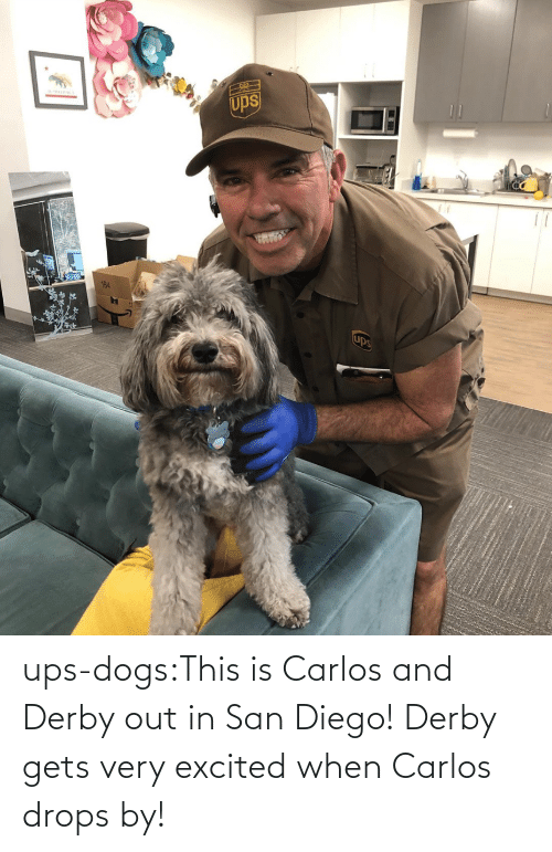 excited: ups-dogs:This is Carlos and Derby out in San Diego! Derby gets very excited when Carlos drops by!