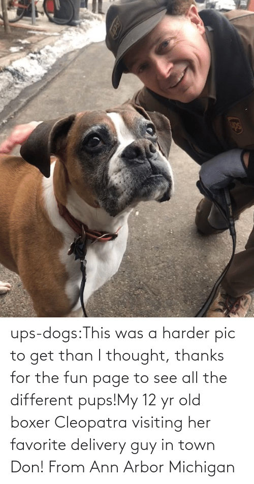ann: ups-dogs:This was a harder pic to get than I thought, thanks for the fun page to see all the different pups!My 12 yr old boxer Cleopatra visiting her favorite delivery guy in town Don! From Ann Arbor Michigan