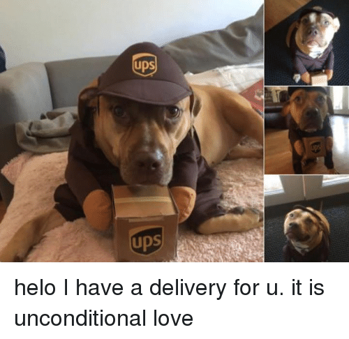 Dank, Love, and Ups: UPS  ups helo I have a delivery for u. it is unconditional love