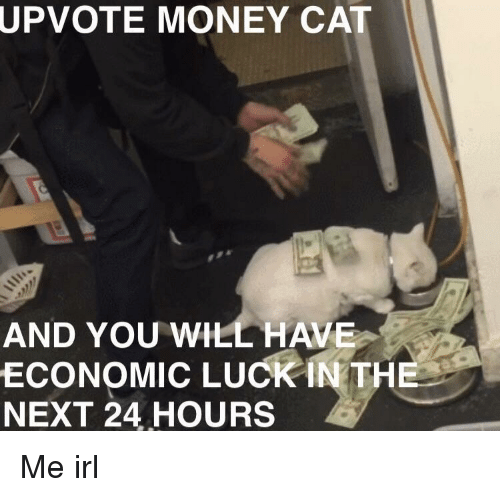 money cat: UPVOTE  MONEY CAT  AND YOU WILL HAVE  ECONOMIC LUCK İNTHE  NEXT 24 HOURS Me irl