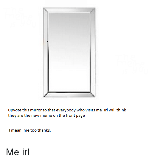 Meme, Mean, and Mirror: Upvote this mirror so that everybody who visits me_irl will think  they are the new meme on the front page  I mean, me too thanks