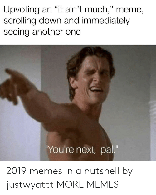 "youre next: Upvoting an ""it ain't much,"" meme,  scrolling down and immediately  seeing another one  You're next, pal"" 2019 memes in a nutshell by justwyattt MORE MEMES"