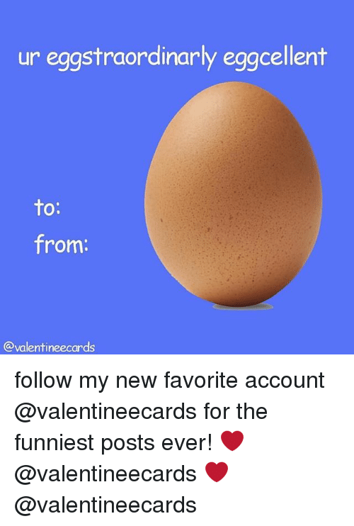 Girl Memes, Account, and New: ur eggstraordinarly eggcellent  to:  from:  @valentineecards follow my new favorite account @valentineecards for the funniest posts ever! ❤️ @valentineecards ❤️ @valentineecards