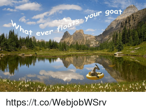 Memes, Goat, and 🤖: ur goat  at ever  ever floats your https://t.co/WebjobWSrv