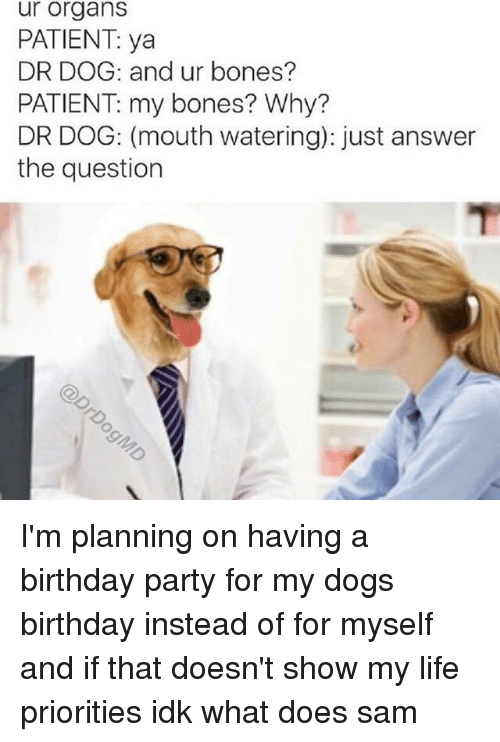 Just Answer The Question: ur organs  PATIENT: ya  DR DOG: and ur bones?  PATIENT my bones? Why?  DR DOG: (mouth watering): just answer  the question I'm planning on having a birthday party for my dogs birthday instead of for myself and if that doesn't show my life priorities idk what does ≪sam≫