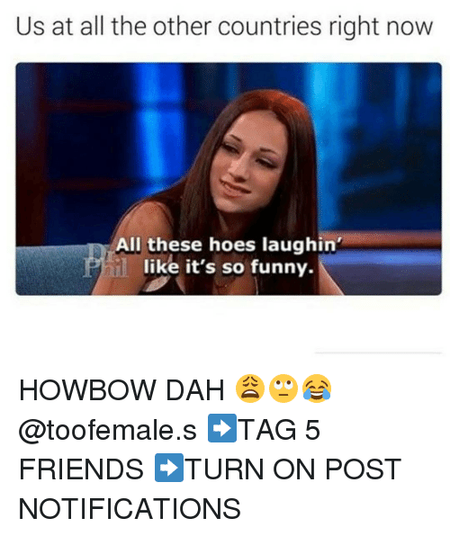 All These Hoes: Us at all the other countries right now  All these hoes laughin'  like it's so funny. HOWBOW DAH 😩🙄😂 @toofemale.s ➡TAG 5 FRIENDS ➡TURN ON POST NOTIFICATIONS