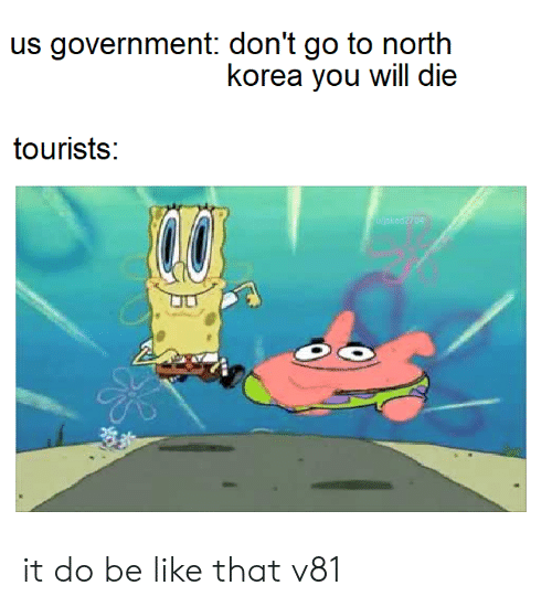 you will die: us government: don't go to north  korea you will die  tourists:  04 it do be like that v81