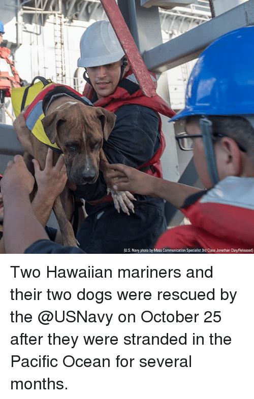 mariners: US. Navy photo by Mass  Specialist 3rd Class Jonathan Clay/Released) Two Hawaiian mariners and their two dogs were rescued by the @USNavy on October 25 after they were stranded in the Pacific Ocean for several months.