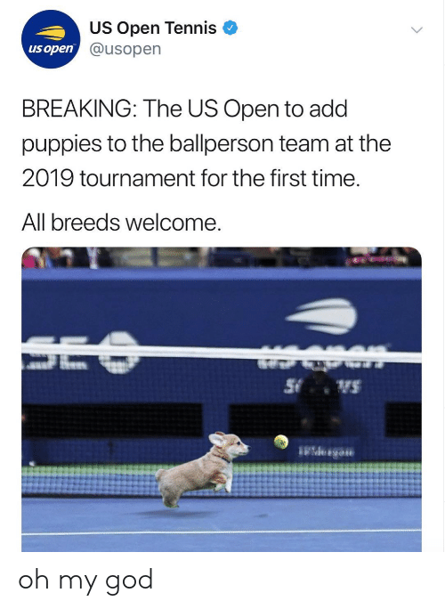 Tournament: US Open Tennis  @usopen  us open  BREAKING: The US Open to add  puppies to the ballperson team at the  2019 tournament for the first time  All breeds welcome oh my god