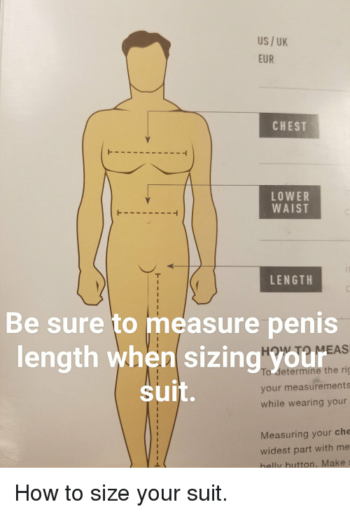The absolute penis weight and length