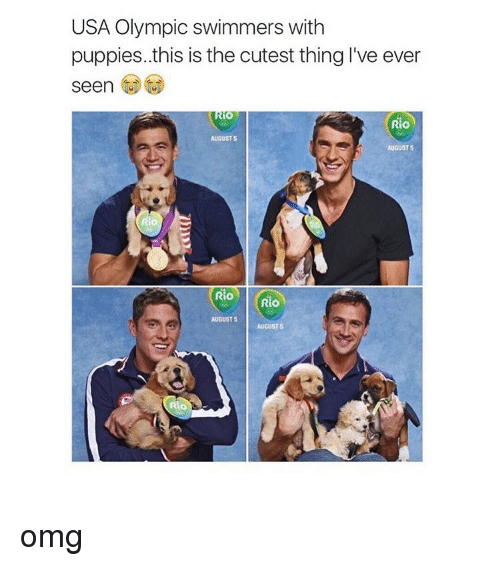 Puppies, Puppy, and Girl Memes: USA Olympic swimmers with  puppies..this is the cutest thing I've ever  seen  Rio  AUGUST S  AUGUST 5  Rio  Rio  AUGUST 5  AUGUST s omg
