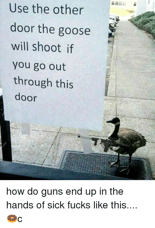 Guns, Memes, and Sick: Use the other  door the goose  will shoot if  you go out  through this  door how do guns end up in the hands of sick fucks like this....🍩c