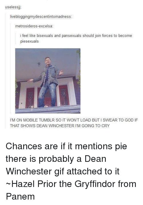 panem: useless  live bloggingmydescentintomadness  metrosideros-excelsa  i fee  like bisexuals and pansexuals should join forces to become  piesexuals  l'M ON MOBILE TUMBLR SO IT WON'T LOAD BUTISWEAR TO GOD IF  THAT SHOWS DEAN WINCHESTER IM GOING TO CRY Chances are if it mentions pie there is probably a Dean Winchester gif attached to it ~Hazel Prior the Gryffindor from Panem