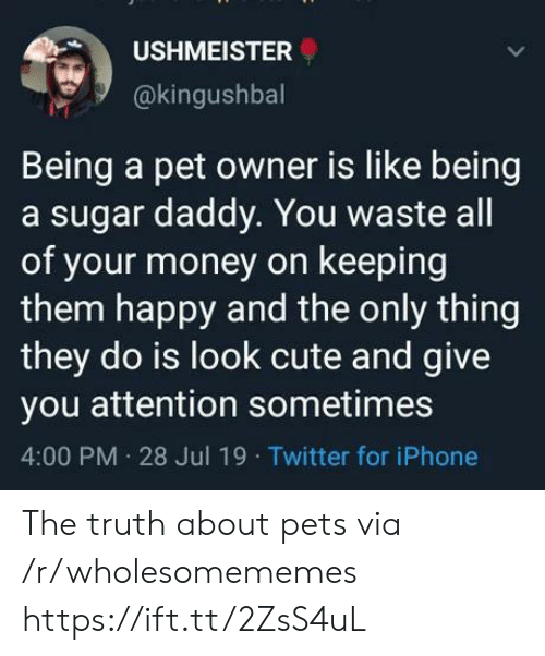 A Sugar Daddy: USHMEISTER  @kingushbal  Being a pet owner is like being  a sugar daddy. You waste all  of your money on keeping  them happy and the only thing  they do is look cute and give  you attention sometimes  4:00 PM 28 Jul 19 Twitter for iPhone The truth about pets via /r/wholesomememes https://ift.tt/2ZsS4uL