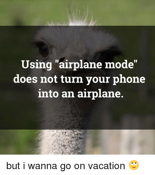 "Memes, Airplane, and Vacation: Using airplane mode""  does not turn your phone  into an airplane but i wanna go on vacation 🙄"