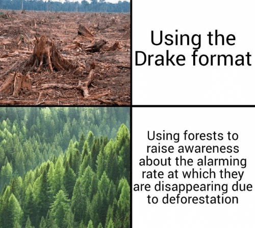 Alarming: Using the  Drake format  Using forests to  raise awareness  about the alarming  rate at which they  are disappearing due  to deforestation