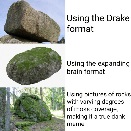 Dank Meme: Using the Drake  format  Using the expanding  brain format  Using pictures of rocks  with varying degrees  of moss coverage,  making it a true dank  meme