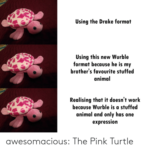 stuffed: Using the Drake format  Using this new Wurble  format because he is my  brother's favourite stuffed  animal  Realising that it doesn't work  because Wurble is a stuffed  animal and only has one  expression awesomacious:  The Pink Turtle