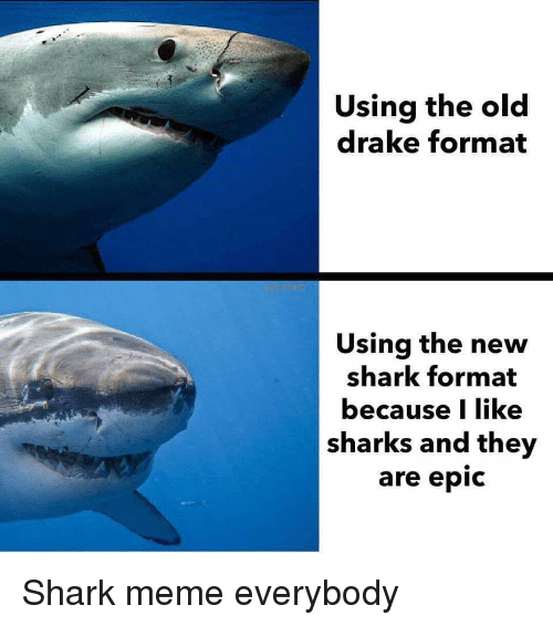shark meme: Using the old  drake format  Using the new  shark format  because I like  sharks and the  are epic