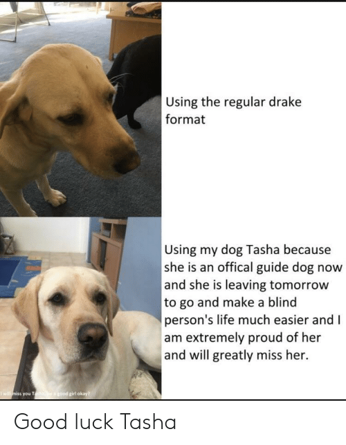 Offical: Using the regular drake  format  Using my dog Tasha because  she is an offical guide dog now  and she is leaving tomorrow  to go and make a blind  person's life much easier and I  am extremely proud of her  and will greatly miss her.  girl okay  you T Good luck Tasha