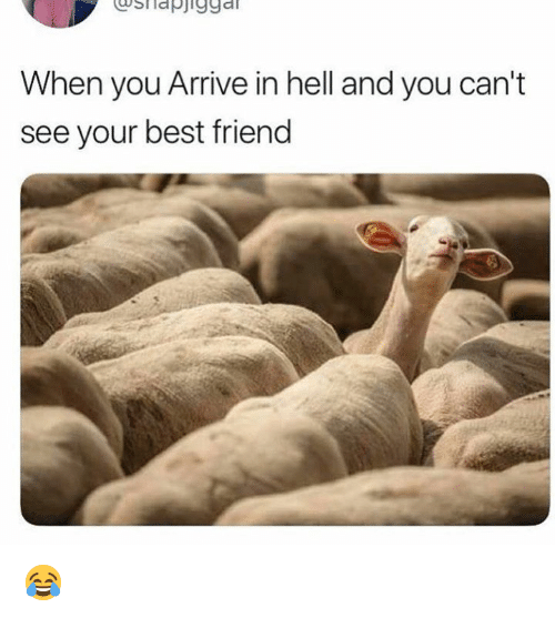 Best Friend, Memes, and Best: usllapj1gga  When you Arrive in hell and you can't  see your best friend 😂
