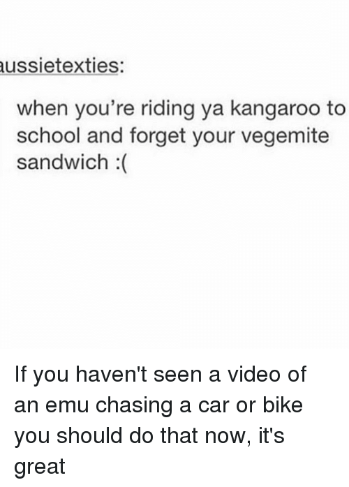 Seens: ussietexties  when you're riding ya kangaroo to  school and forget your vegemite  sandwich :( If you haven't seen a video of an emu chasing a car or bike you should do that now, it's great