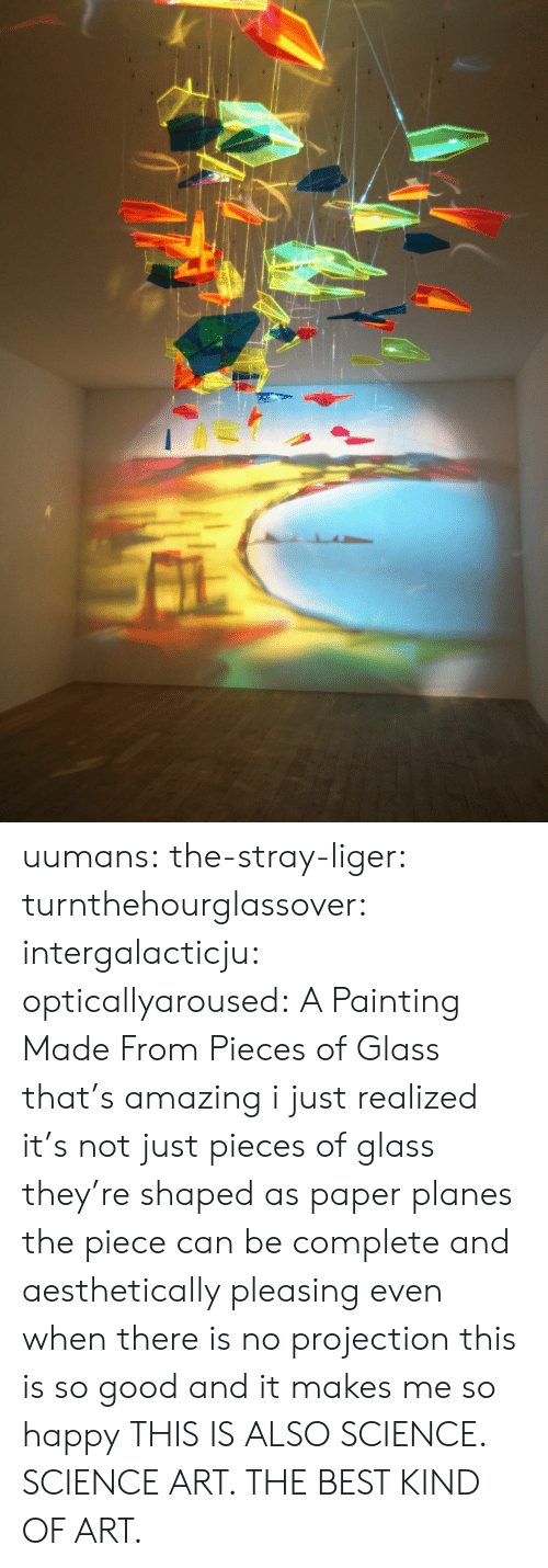 me-so-happy: uumans: the-stray-liger:  turnthehourglassover:  intergalacticju:  opticallyaroused: A Painting Made From Pieces of Glass   that's amazing  i just realized it's not just pieces of glass they're shaped as paper planes the piece can be complete and aesthetically pleasing even when there is no projection this is so good and it makes me so happy  THIS IS ALSO SCIENCE. SCIENCE ART. THE BEST KIND OF ART.