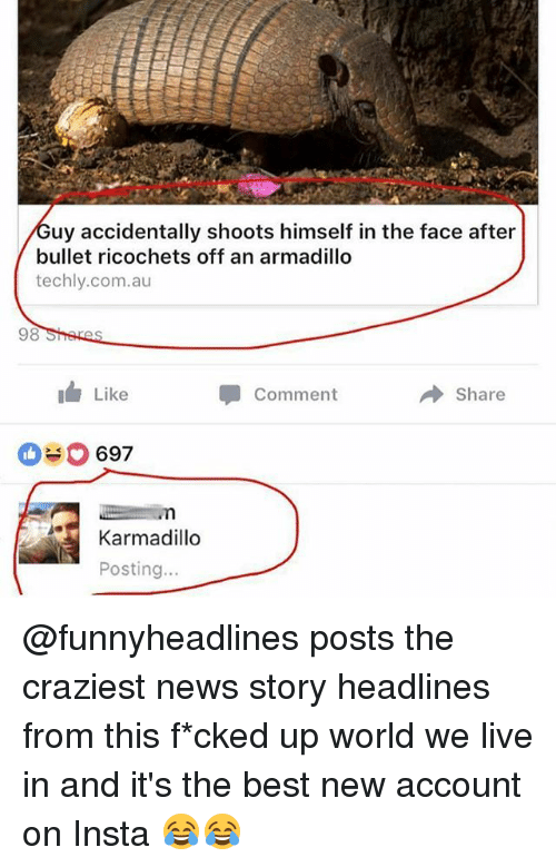 Memes, News, and Best: uy accidentally shoots himself in the face after  bullet ricochets off an armadillo  techly.com.au  98  I Like  Comment  Share  697  Karmadillo  Posting.. @funnyheadlines posts the craziest news story headlines from this f*cked up world we live in and it's the best new account on Insta 😂😂