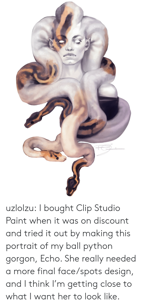 i want her: uzlolzu:  I bought Clip Studio Paint when it was on discount and tried it out by making this portrait of my ball python gorgon, Echo. She really needed a more final face/spots design, and I think I'm getting close to what I want her to look like.