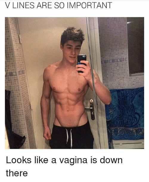 Vagina, Girl Memes, and Line: V LINES ARE SO IMPORTANT Looks like a vagina is down there