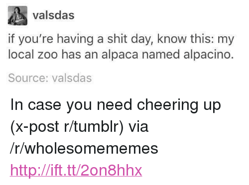 """Cheering Up: valsdas  if you're having a shit day, know this: my  local zoo has an alpaca named alpacino.  Source: valsdas <p>In case you need cheering up (x-post r/tumblr) via /r/wholesomememes <a href=""""http://ift.tt/2on8hhx"""">http://ift.tt/2on8hhx</a></p>"""