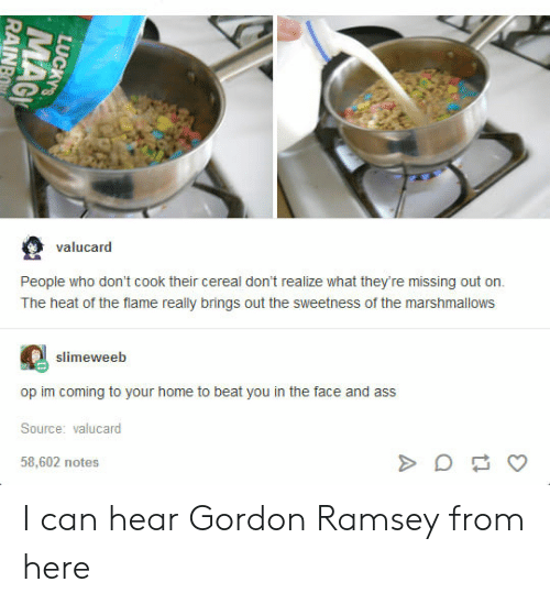 gordon ramsey: valucard  People who don't cook their cereal don't realize what they're missing out on.  The heat of the flame really brings out the sweetness of the marshmallows  slimeweeb  op im coming to your home to beat you in the face and ass  Source: valucard  58,602 notes I can hear Gordon Ramsey from here