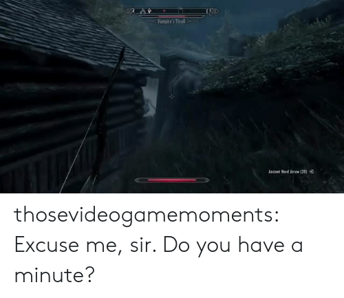 Nord: Vampire's Thrl  Ancient Nord Arrow (20)Q thosevideogamemoments:    Excuse me, sir. Do you have a minute?