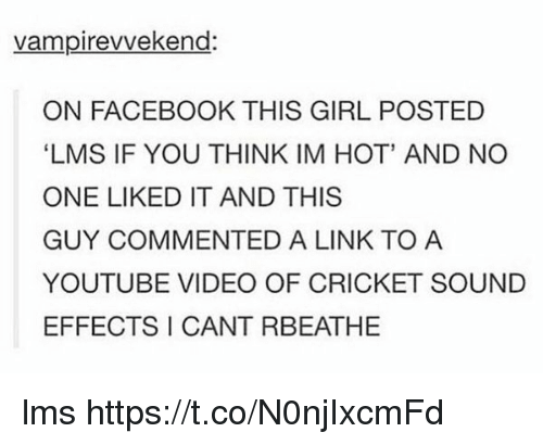Facebook, youtube.com, and Cricket: vampirevvekend:  ON FACEBOOK THIS GIRL POSTED  LMS IF YOU THINK IM HOT' AND NO  ONE LIKED IT AND THIS  GUY COMMENTED A LINK TO A  YOUTUBE VIDEO OF CRICKET SOUND  EFFECTS I CANT RBEATHE lms https://t.co/N0njIxcmFd