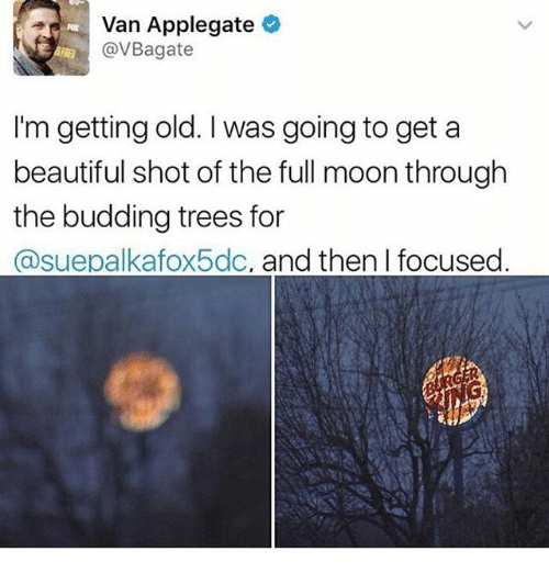 Mooned: Van Applegate  @VBagate  I'm getting old. I was going to get a  beautiful shot of the full moon through  the budding trees for  @suepalkafox5dc, and then I focused